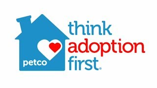 Why You Should Adopt a Pet - Adoption Facts by Petco thumbnail