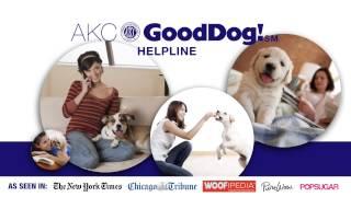 Gooddog Helpline