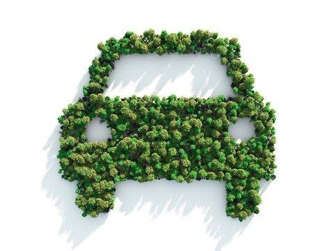Blue Ridge EV Club talks electric cars with WLOS TV13 • 9/7/17 am