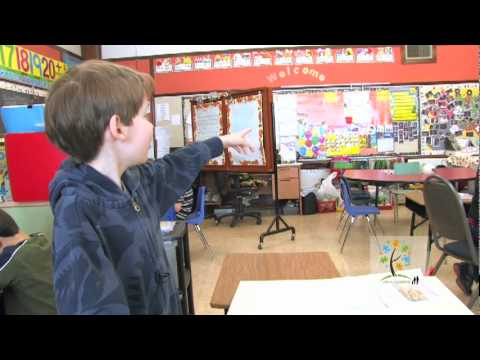 janus-academy---calgary-specialized-school-for-children-with-autism