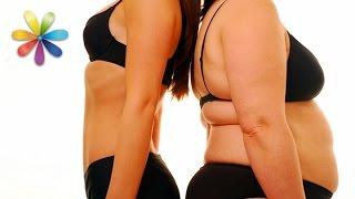 Как семья похудела на 93 кг? – Все буде добре. Выпуск 800 от 28.04.16