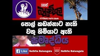 Balumgala - පොල් කඩන්නට නැති වත්තේ හිමිකරුට ඇති දේ - 15th August 2017
