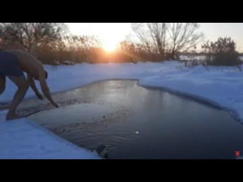 Моржевание  Купание в ледяной воде Закаливание.Walrus Swimming In Ice Water Hardening
