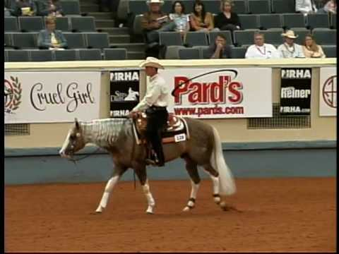 Big Chex To Cash - 2007 NRHA Derby