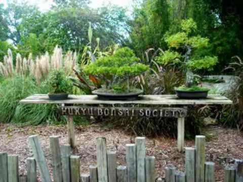 Merveilleux USF Botanical Gardens