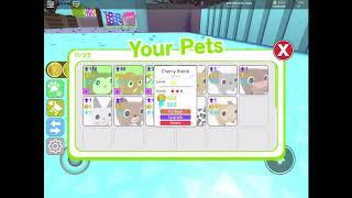 Pet simulator episode 3 - unlocking 2 and a half million area (roblox)