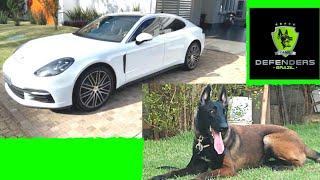 Como os RICOS ESTÃO REFORÇANDO A SEGURANÇA DAS SUAS CASAS! |Cães de Guarda|Pastor Belga Malinois