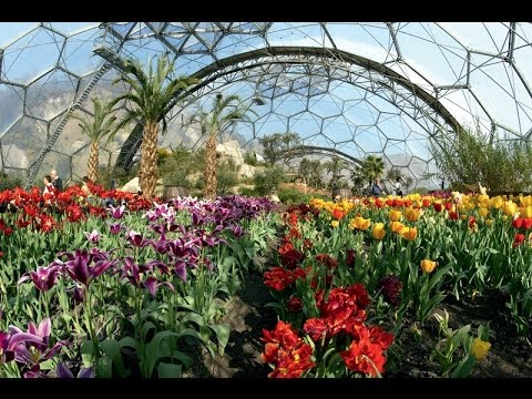 The Eden Project Cornwall - The Mediterranean Biome
