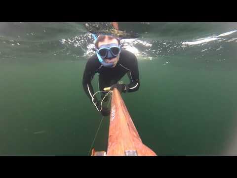 Big Cuda shot - 16 kg - Chasse sous marine Gabon