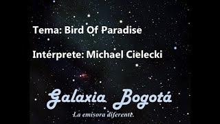 Baixar MICHAEL CIELECKI - BIRD OF PARADISE