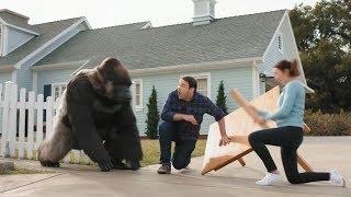 All gorilla glue aḋs but perfectly cut