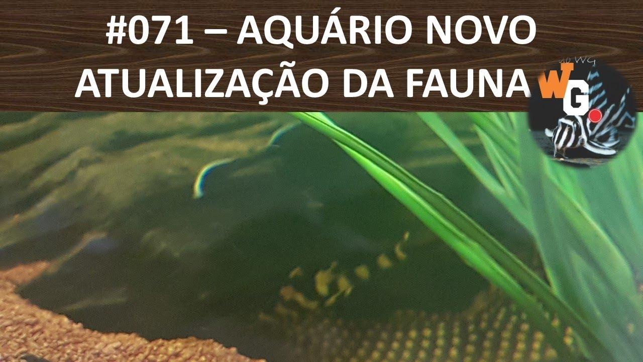 Atualização da Fauna - Será que deu M??? - #071