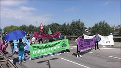 Umweltgruppe blockiert Köhlbrandbrücke in Hamburg