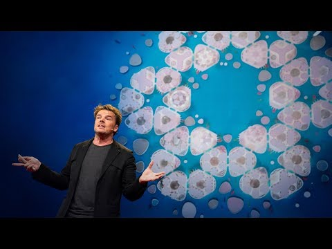 Floating cities, the LEGO House and other architectural forms of the future | Bjarke Ingels