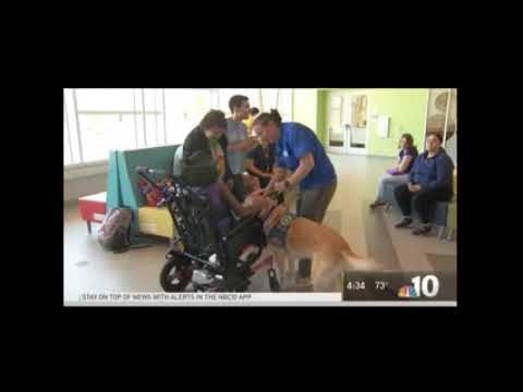 The Bancroft School hosts 'Penny Wars' to fund new therapy dog
