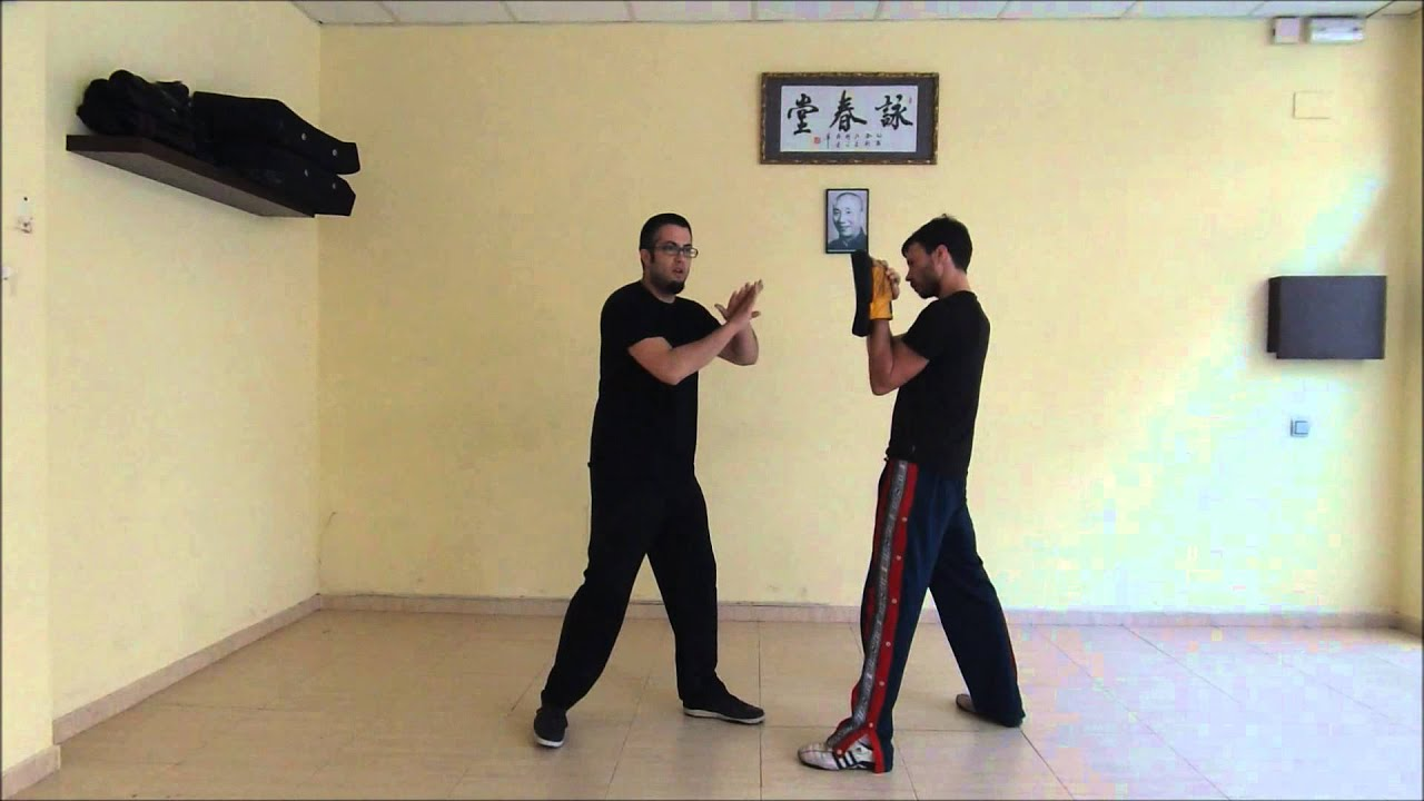 ¿Por qué se llama Wing Chun a este Arte de Defensa Personal?