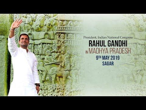LIVE: Congress President Rahul Gandhi addresses public meeting in Sagar, Madhya Pradesh