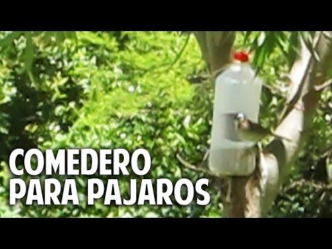 Comedero para aves silvestres en 2 minutos - recontra facilisimo @cosasdeljardin
