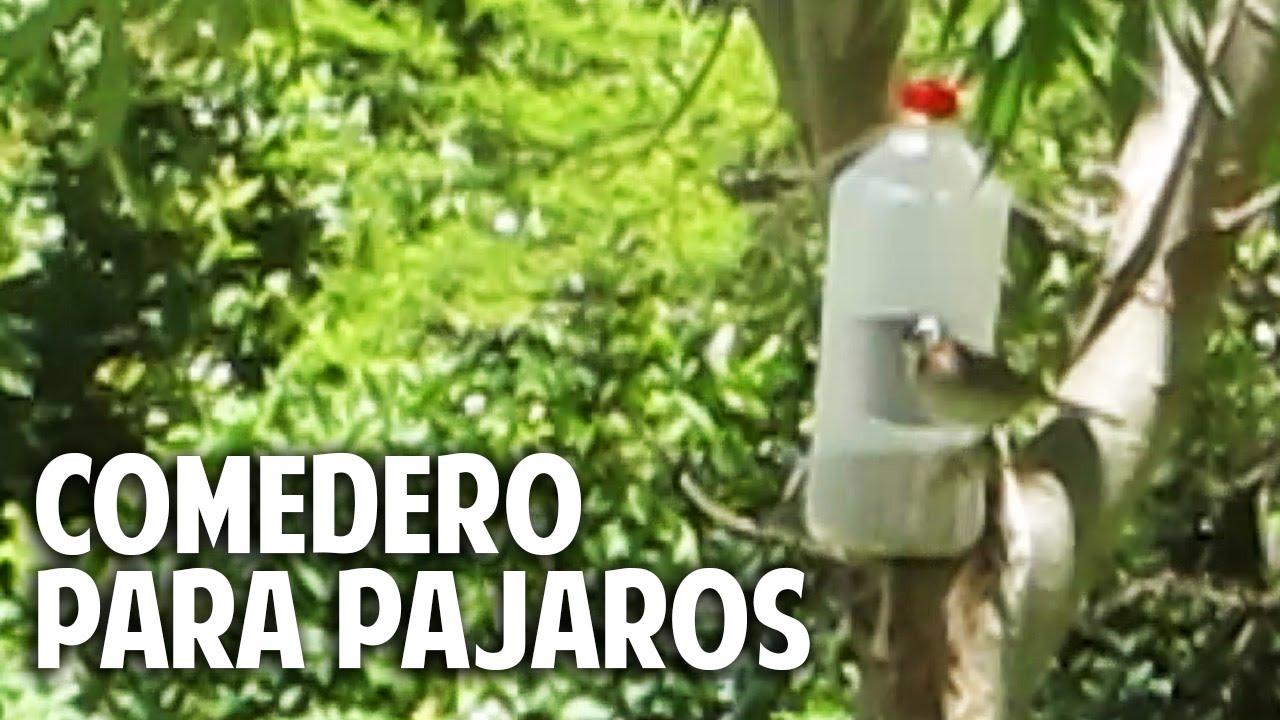 Comedero para aves silvestres en 2 minutos recontra for Casas de plastico para jardin
