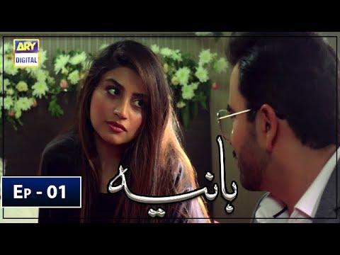 Hania Episode 1 - 21st February 2019 - ARY Digital Drama