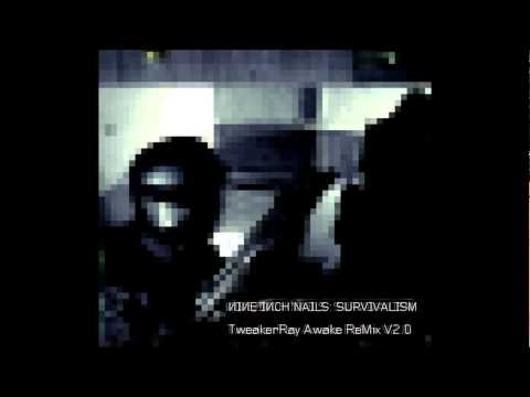 Nine Inch Nails - Survivalism (Awake V2.0 ReMix by TweakerRay) mp3