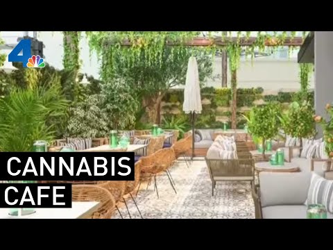 The Rick Lewis Show - Cannabis Restaurant to Open Soon in California