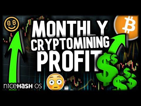 monthly-cryptomining-profits!