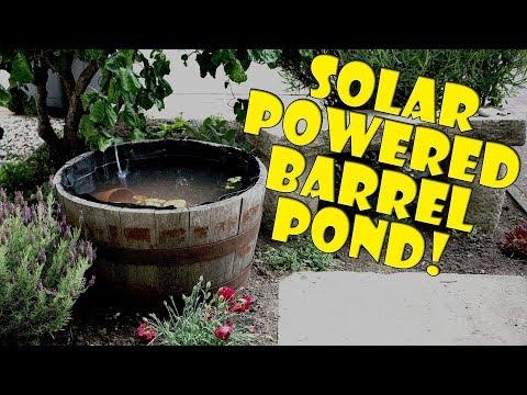 Mini Garden Goldfish Pond - Solar Powered?