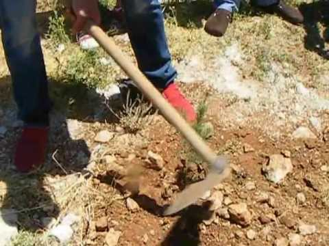 Peugeot Sport Lebanon - Planting a Cedar Tree - Ma3aser al Chouf
