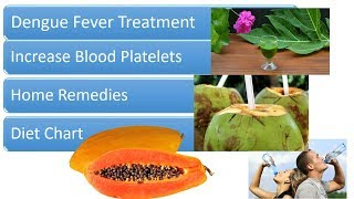 Dengue  Fever Treatment, Home Remedies and Diet Chart - Increase Blood Platelets count