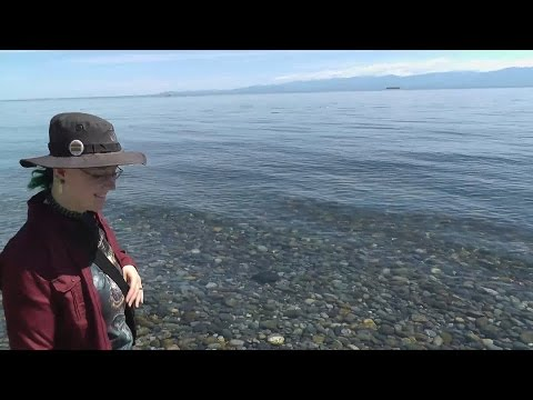 A trip to the beach at Beacon Hill Park in Victoria, BC