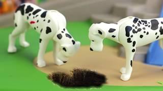Ausbruch der Polizeihunde - Playmobil Polizei Film - KARLCHEN KNACK #163