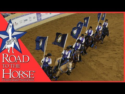Road to the Horse 2016 Young Guns 4H Drill Team Performance