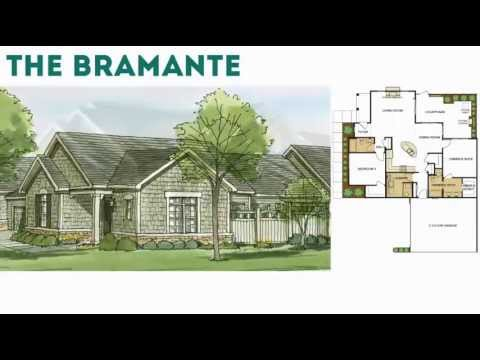 3. Bramante | from the Courtyard Collection