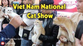 Chiêm ngưỡng những chú mèo nghìn đô tại Triển lãm mèo quốc gİa đầu tiên tại Việt Nam