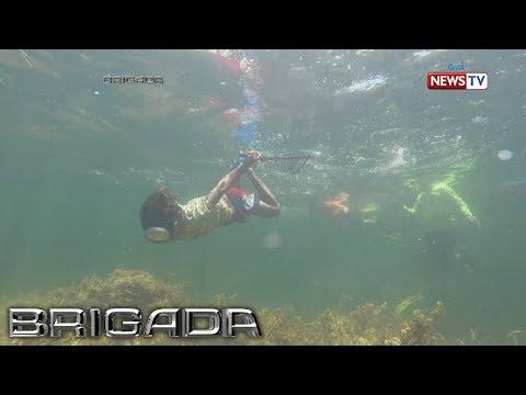 Brigada: Mga bata sa Bolinao, Pangasinan, nabubuhay sa pamamana ng isda