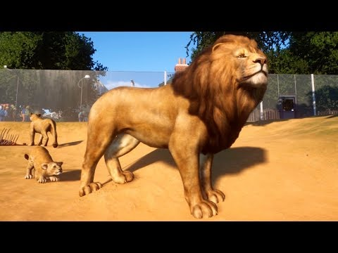 Planet Zoo - West African Lion - Open World Free Roam Gameplay (PC HD) [1080p60FPS]