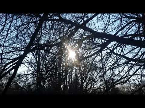 Earth Day Full Moon ~ Ama Mother Gaia Lunar Energy Channeled Light Language Healing Transmission