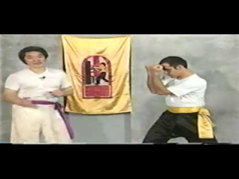 GrandMaster William Cheung KUNG FU Wing Chun Fighting Strategy