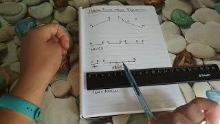 Отрезок. Длина отрезка. Треугольник. Математика 5 класс.