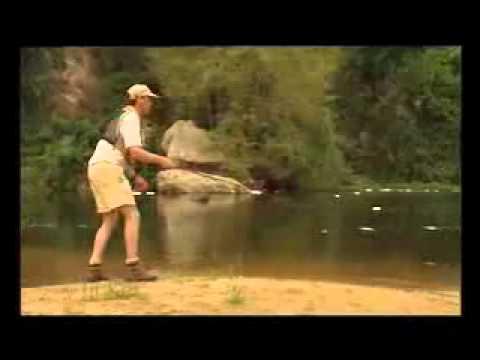 Murchison Falls Far Out Fishing   Nile Perch in Uganda  www newuganda com