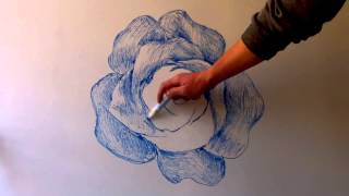 How to draw basic flower with blue marker in white board for 20 minutes