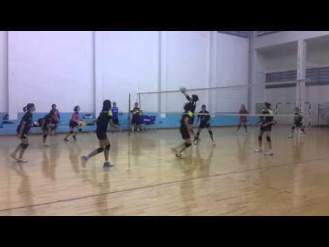วอลเลย์บอลหญิงทีมชาติไทย ซ้อม 8-2-2016