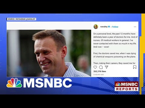 Moscow Court Bans Public Activity By Navalny's Groups | MSNBC