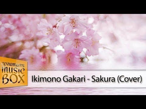 Ikimono Gakari - Sakura (Türkçe Altyazılı/Cover) HD