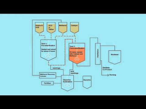 Biodiesel Animation