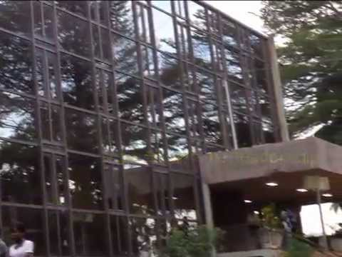 L' Université de Yaoundé I en bref