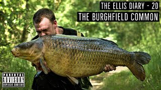 THE ELLIS DIARY - THE BURGHFIELD COMMON!