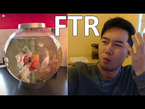This Tank Is Not Overstocked | Fish Tank Review Ep. 1