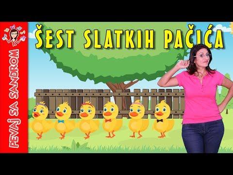 Šest slatkih pačića | Pevaj Sa Sandrom | Sing With Sandra | Dečije pesme